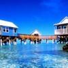 Рајот се наоѓа на Тахити