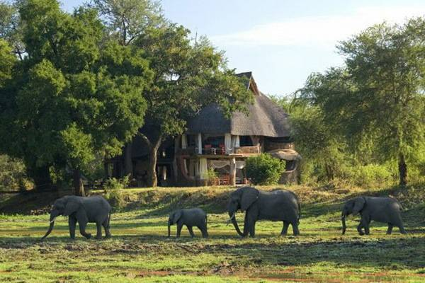 The Million Dollar Safari package covers exotic Africa in a private plane