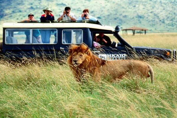 luksuz-putovanje-destinacija-odmor-safari-od-milion-dolara_10