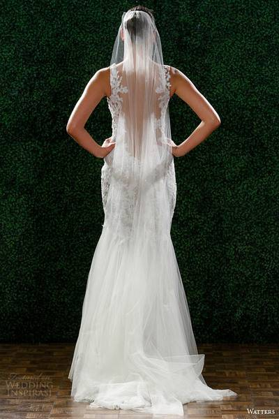 watters-spring-2015-wedding-dress-style-6030b-cinzia-lace-sheath-back-view