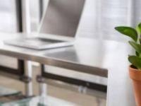 Уништете го стресот на работа со билки