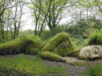 Чудни ботанички градини
