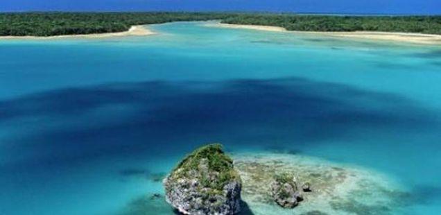 Островот на боровите – Нова Каледонија