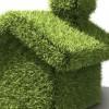 """""""Позеленете"""" го домот"""