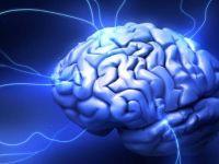 Мозокот си бара ментална гимнастика
