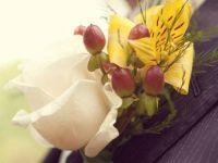 Интересни цветови за ревери за младоженецот и останатите сватови