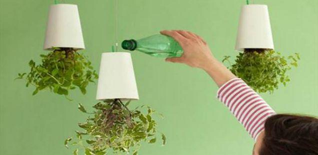 """Sky Planters – необичните саксии за поинаква """" внатрешна градина """""""