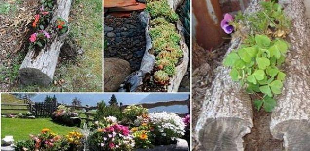 Искористете ги дрвата од зимата, за декорација на дворот!