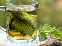 Чај од коприва како лек за анемија