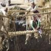 Неверојатно: Висечки мост во Перу направен од трева