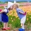 Зошто децата во Холандија се едни од најсреќните на светот?