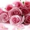 Што вашиот омилен цветен мирис кажува за Вас!