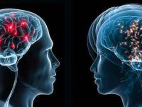 Жените имаат помал мозок, но поефикасен од машкиот!