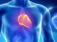 Овие се симптомите на СРЦЕВ УДАР: Ако сте погодени, отидете веднаш на лекар