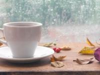 Еве зошто чајот треба да се пие секој ден