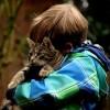 Домашните миленичиња влијаат врз здравјето на децата: Еве што можат да научат од нив