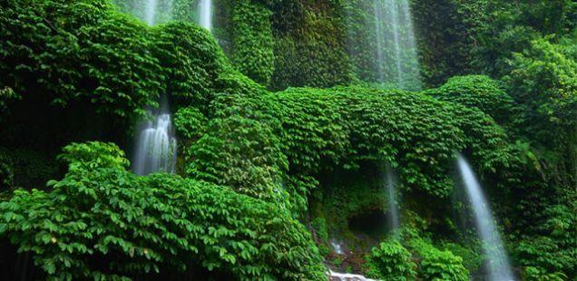 Посетете го водопадот Benang Kelambu во националниот парк на планината Rinjani, Lombok