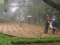 Соединете се со  Buddha – Kwazulu natal, Јужна Африка