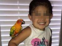 Веднаш штом ќе викне, нејзиното милениче тргнува во напад: Девојче ја истренира птицата да ја брани од сите што не ѝ се допаѓаат