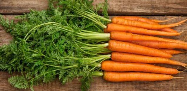 Чудесен лек кој го намалува притисокот: еве како да користите  листови од морков за чистење на крвта и хипертензија